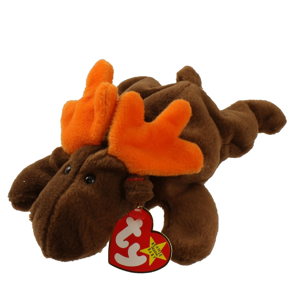 Ty Beanie Baby Chocolate The Moose 9 Inch Mint